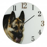 Friend German Shepherd Dog